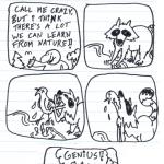 comic-2012-08-06.png